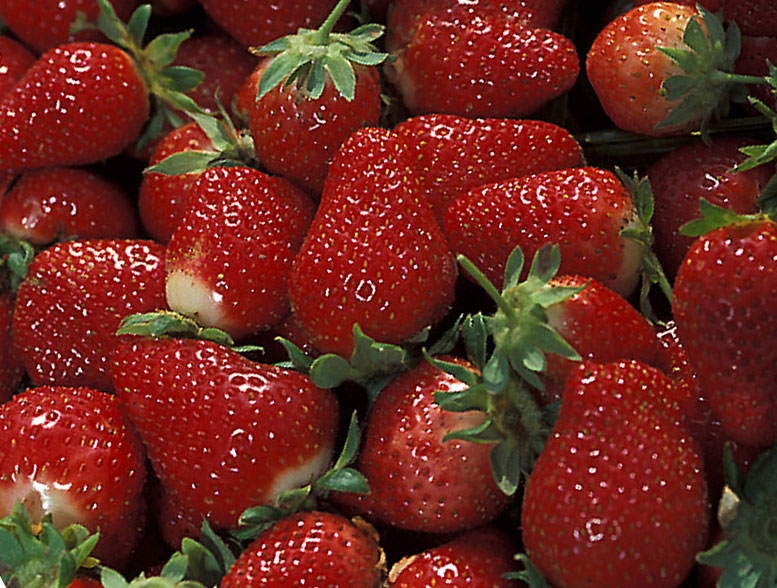 Coba Buat Resep Minuman Sirup Strawberry Paling Lezat Ini